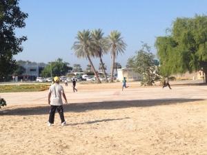 Cricket_Barjeel.JPG