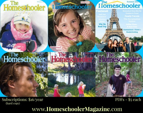 My article A Handcrafted Education is in the Summer 2014 issue