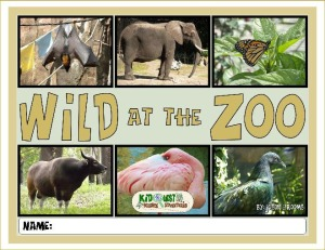 Wild at the Zoo by Jason Grooms