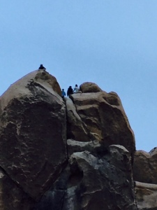 We slipped away for one night to attend this camping trip in Joshua Tree in California.