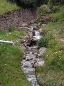 stones lining the Creek
