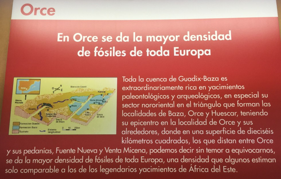 orce museum 17